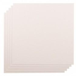 Cartons Gris (30,5 x30,5...