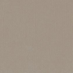 Florence cardstock texture Stone
