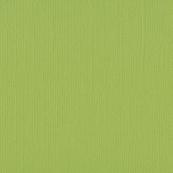 Florence cardstock texture 12x12 Pistachio
