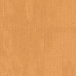 Florence cardstock texture 12 X 12 Apricot