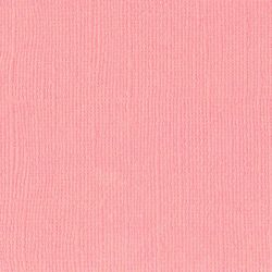 Florence cardstock texture 12 X 12 Sweet