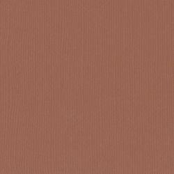 Florence cardstock texture 12 X 12 Imber