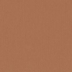 Florence cardstock texture 12 X 12 Brick