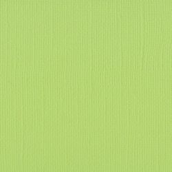 Florence cardstock texture 12 X 12 Celery