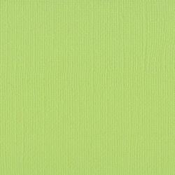 Florence cardstock texture 12 X 12 Celery