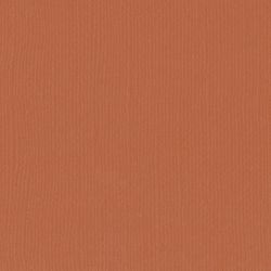 Florence cardstock texture 12 X 12 Fox